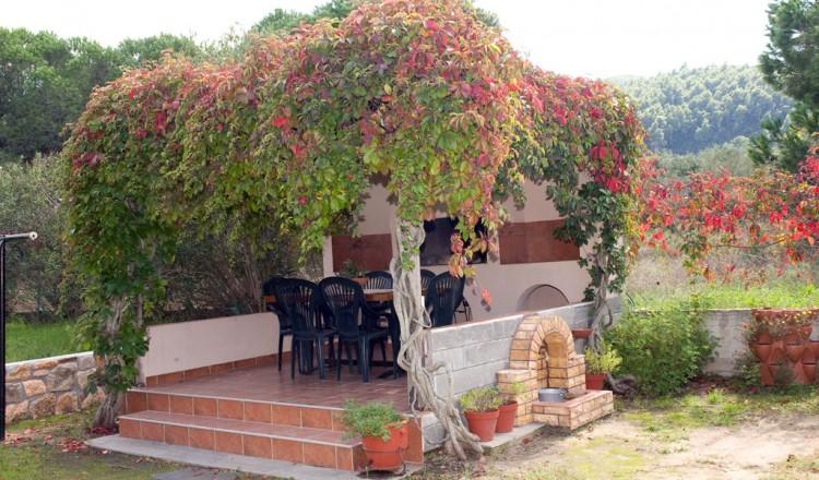 Garden Litsa Panagi