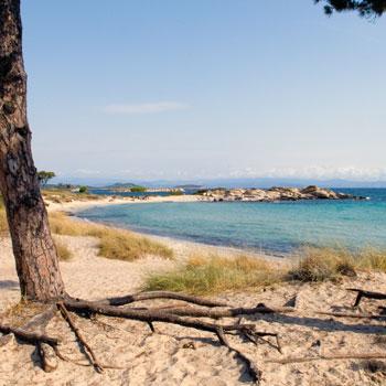 Beach Karydi Vourvourou Halkidiki Sithonia